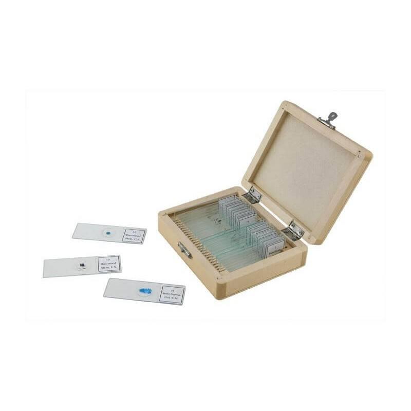 Caja de 25 preparaciones microscópicas #44410 - Celestron