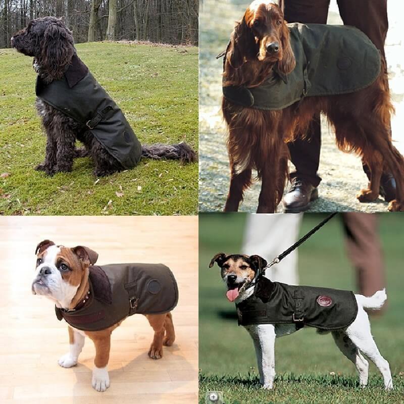 Barbour Capa para perro Wax olive - Capas para perro BARBOUR