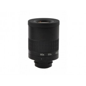 KITE OPTICS SP-82 ED eyepiece 20-60x - 5425026282189 - Kite Optics - Telescopios KITE OPTICS
