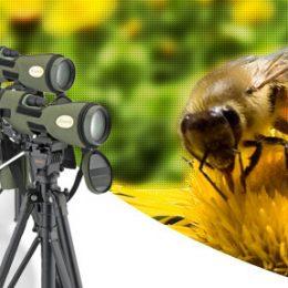 Telescopios terrestres, aspectos técnicos a tener en cuenta para la compra de un telescopio...
