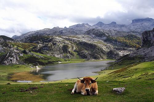 lagos-de-covadonga